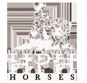 HPH Horses